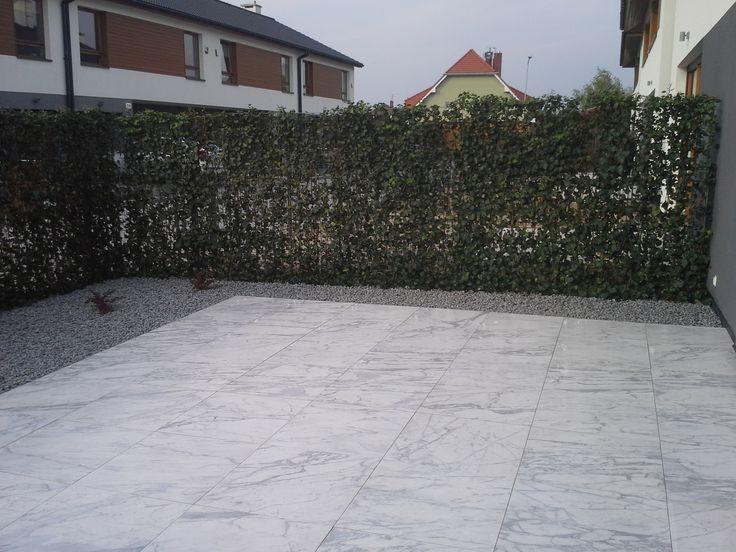 Ekologiczne ogrodzenie, ogrodzenie z paneli z bluszczu