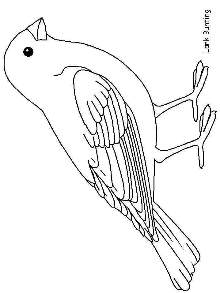 Ausmalbilder V El Im Vogelhaus Amorphi