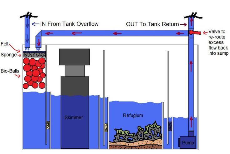 X Aqau One Tank Build