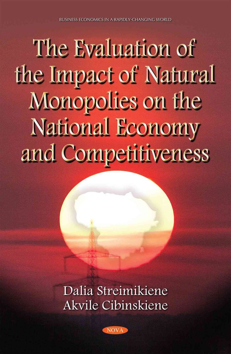 The Evaluation of the Impact of Monopolies on the National Economy and Competitiveness