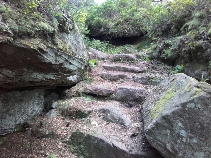 Comme elles sont bienvenues ces marches vestiges des temps anciens #marche #granite #grande randonnée #foret #randonnée #dénivelé