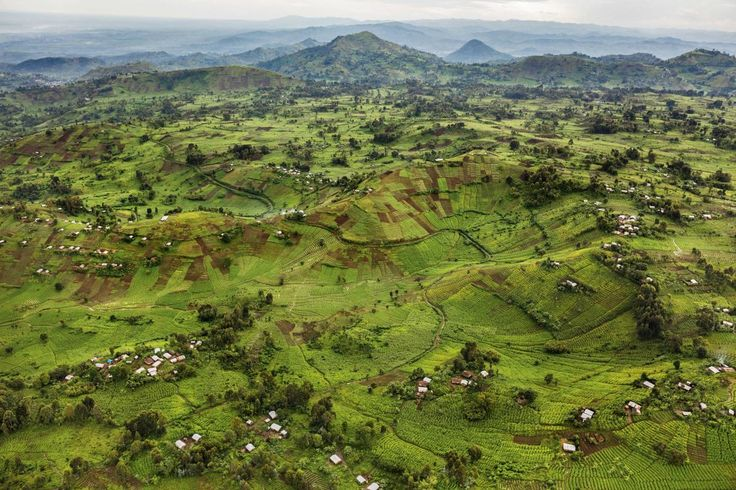 Virunga National Park.  Photograph by Brent Stirton
