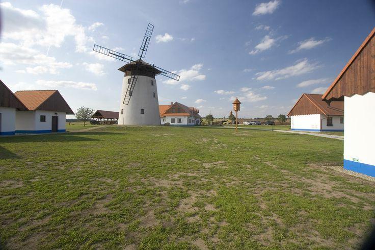 Větrný mlýn, který se stal zdaleka viditelnou dominantou kopce nad obcí Bukovany u Kyjova, byl postaven a slavnostně otevřen v roce 2004.