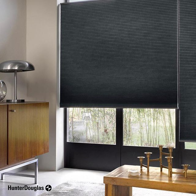 Make A Bold Statement With The Hunterdouglas Duette In Black Onyx