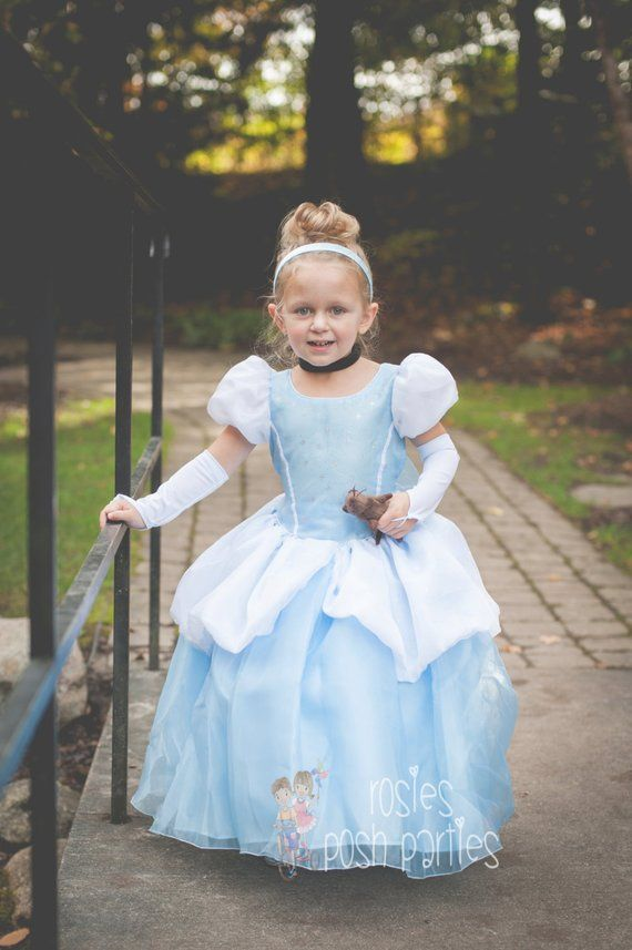 2e2baa69c1eec Cinderella dress for Birthday costume or Photo shoot Cinderella ...
