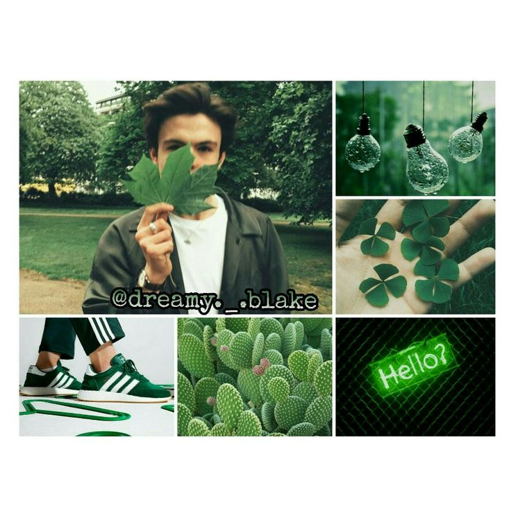 Green /Follow me on IG:@dreamy._.blake/ #BlakeRichardson #Newhopeclub #Newhopeblake