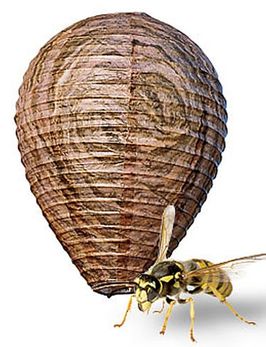 Natural Wasp Deterrent. Turn your deck or patio into a no-fly zone with these imitation wasp nests. Research has demonstrated that wasps are territorial and avoid other nests.