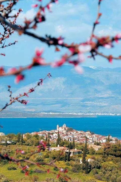 Springtime in Galaxidi  - Greece