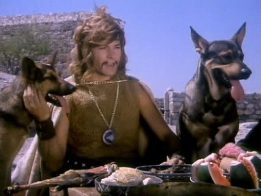 tarkan: kurt babanı kim öldürdü?  kurt: hav! hav! hav!  tarkan: hain kostok!