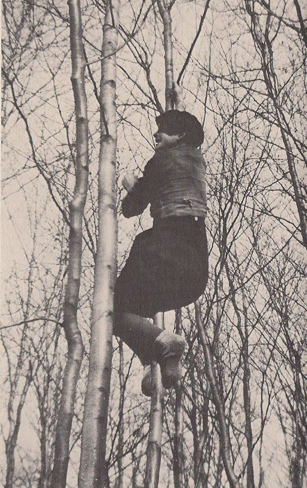 Sophie Scholl climbing a tree from The Short Life of Sophie Scholl by Hermann Vinke.  At the age of 21, Sophie Scholl was executed by the People's Court in Germany on Feb. 22, 1943, during the Holocaust, for her involvement in The White Rose, an organization that was secretly writing pamphlets calling for the end of the war and strongly denouncing the inhuman acts of the Nazis.