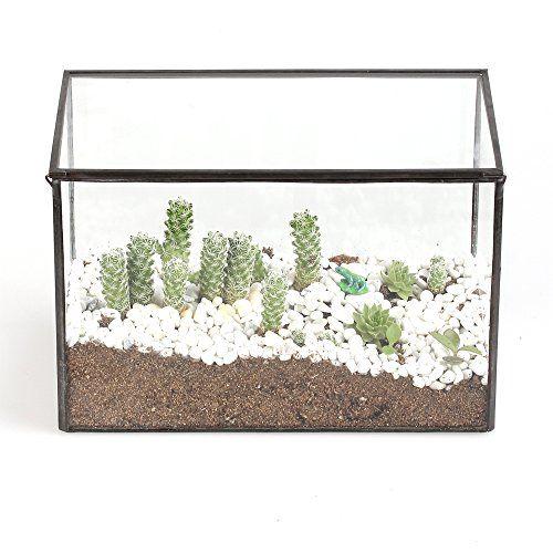 Rectangle Cuboid Clear Glass Geometric Terrarium Box With A Lid Tabletop Succulent Plant Moss Fern Planter Pot 161010cm