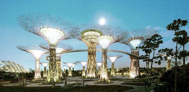 Картинки по запросу сингапур архитектура