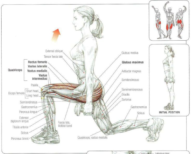 how to build leg muscles at work