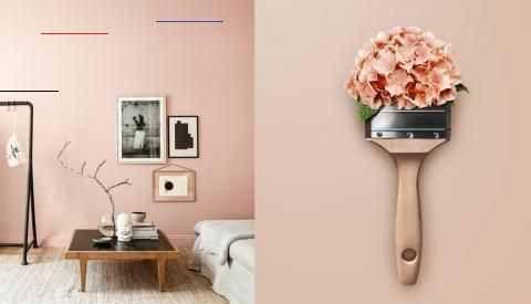 Schoner Wohnen Farbe Unsere Trendfarben Schonerwohnen Lernen Sie Die Trendfarb In 2020 Schoner Wohnen Trendfarbe Schoner Wohnen Farbe Schoner Wohnen Wandfarbe