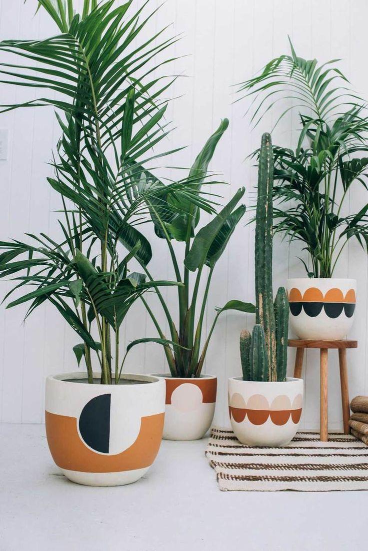 569 best images about plants indoor hanging diy pots for Cache pot interieur