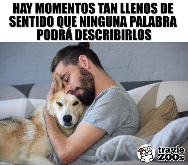 Me Haces Tan Feliz Felicidad Love Amor Mascota Perros Animales Frases Perros Frases Perros Tristes