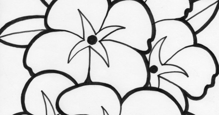 303 best coloring pages images on pinterest coloring for Blank flower coloring pages