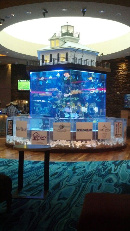 66 best fish tanks made by atm images on pinterest fish for Fish hotel tank