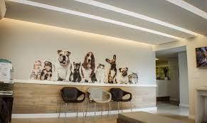 Znalezione obrazy dla zapytania clinica veterinaria espera