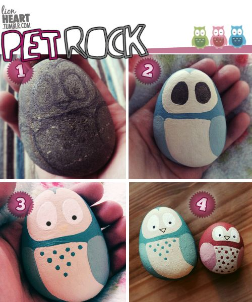 How to paint simple Pet Owl Rocks