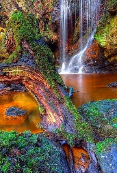 Nature Views -England - Roughting Linn Waterfall  Northumberland, England