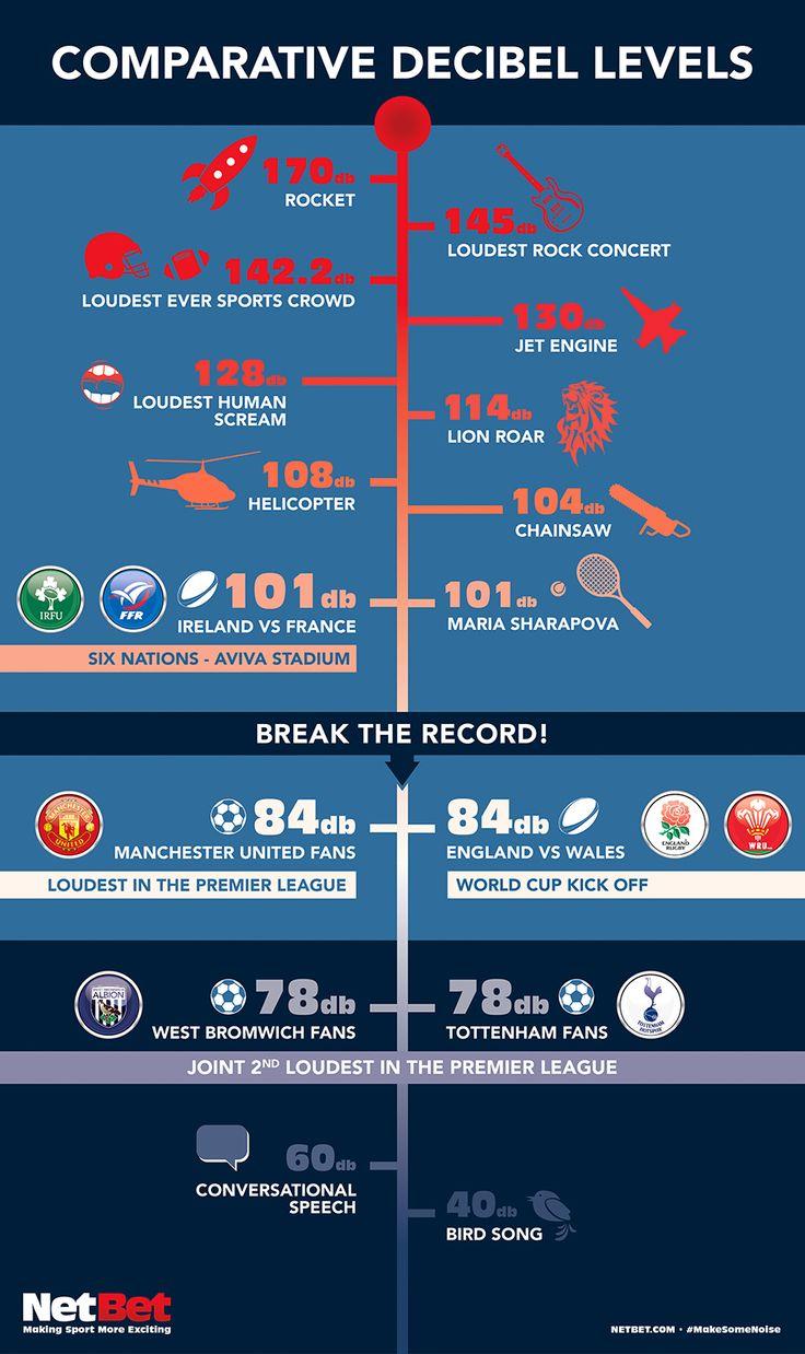 Decibel Levels Infographic