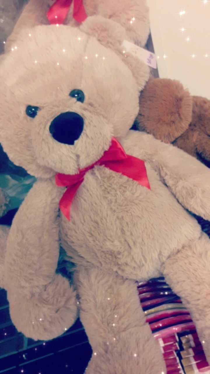 What Every Girl Wants For Valentines Day A Big Teddy Bear