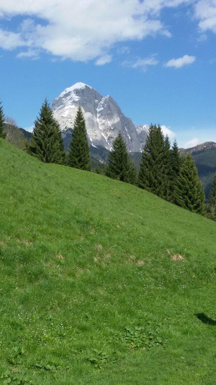 Monte Peralba - Dolomites, province of Belluno, Veneto, Northern Italy