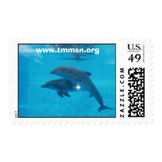 TMMSN Rescues Postage Dolphins