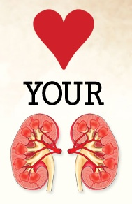 Did you love your kidneys today?