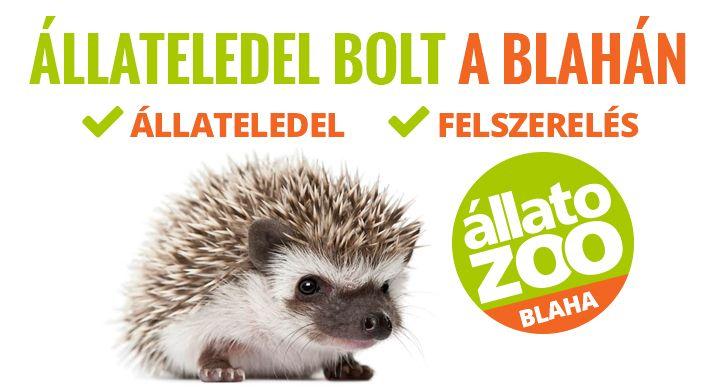 #törpesün #allatozoo #állateledel #állat