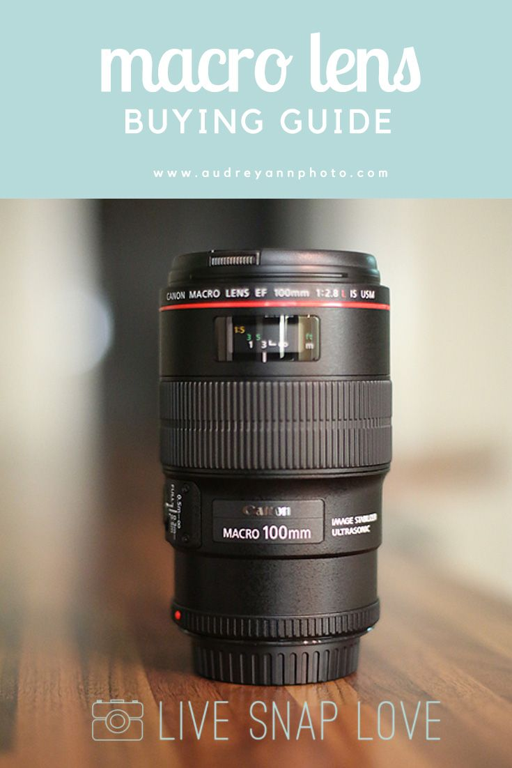 Macro Lens Buying Guide: What to look for along with some suggestions for different price points.