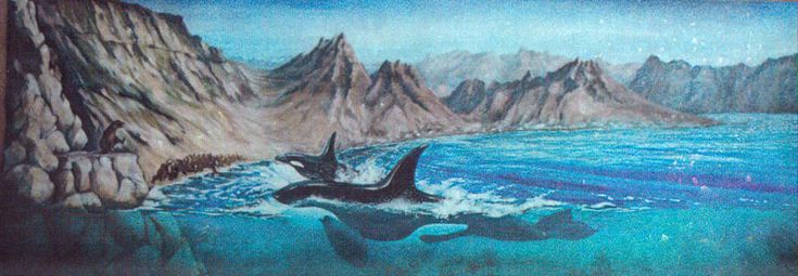 """La """"scène des orques""""   Océanopolis, Musée de la Mer - 1994  14 x 4,50 m  Brest"""