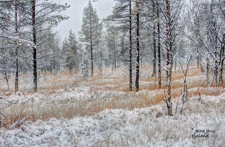 First snow winter Ylläs Finland by Juha Jousi