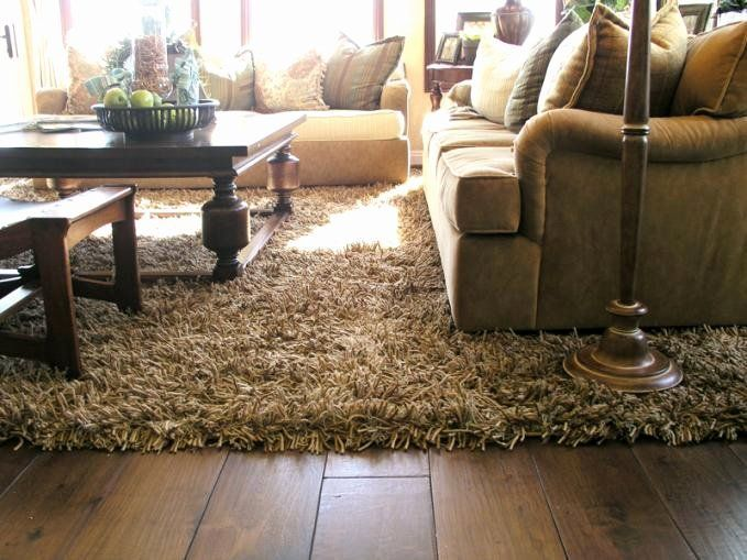 Area Rug Idea For Living Room Elegant Add Luxury And Fort To Your Living Room With Shag Rugs You A Living Room Carpet Rugs In Living Room Shag Rug Living Room