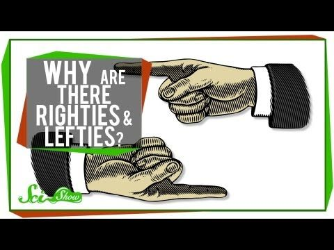 ▶ Why Are There Righties & Lefties? - YouTube