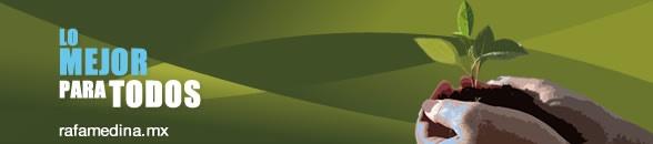 La delegación Álvaro Obregón tiene una extensión de 97 Km cuadrados, 6.5 por ciento del total del D.F. En cuanto al uso de suelo de la demarcación 66.1 por ciento de su territorio es suelo urbano y 33.8 por ciento es suelo de conservación. En ella existe un número no determinado de barrancas que varía entre siete y dieciséis dependiendo de la fuente consultada, así como presas y cuerpos de agua.