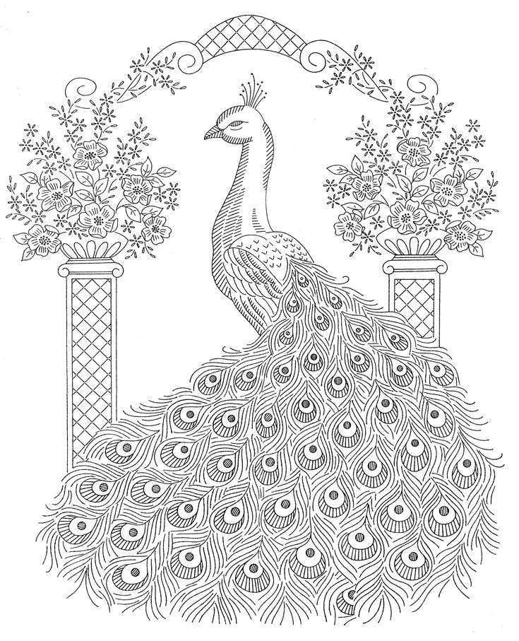 "laura wheeler embroidery patterns | Laura Wheeler Design 893 — Peacock Bedspread Motif"" was published ..."