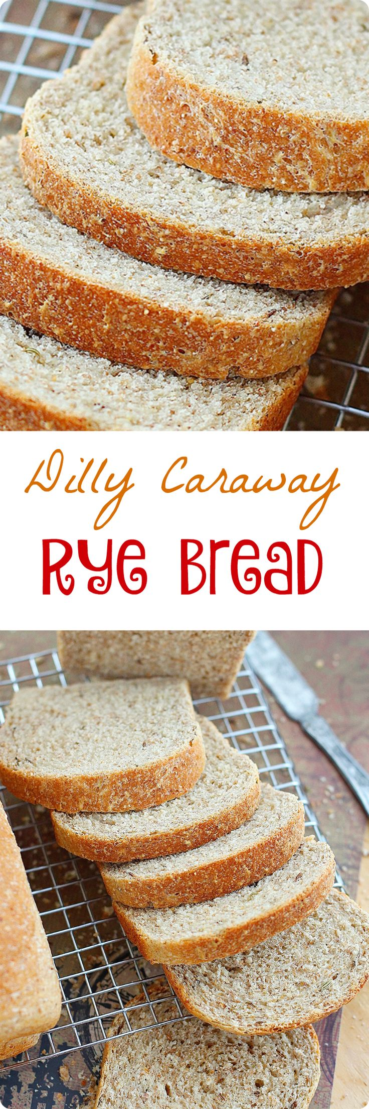 Light and airy, with a soft crust and filled with caraway and dill seeds, this egg free bread is just what you need to make delicious deli sandwiches. Find recipe at redstaryeast.com.