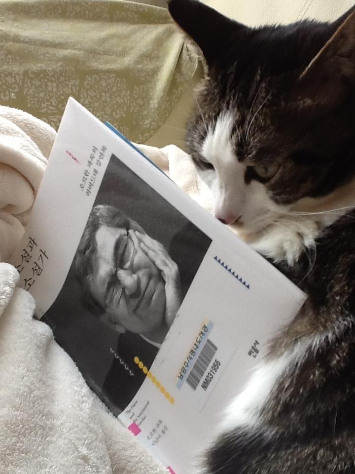 [Cathy Jang] 소설과 소설가. 오르한 파묵. 방해하는 고양이.  주변에 이런 책을 읽고 이야기할 사람이 없어요. 그래서 책벌레 그룹이 너무 반가웠는데...  수준이 너무 높아서 제가 감히 끼어들 자리가 아닌가...싶어요. 장르 차이일지도 모르겠네요. 커밍 아웃하자면... 전 스티븐 킹 매니아예욬!;;;; https://www.facebook.com/photo.php?fbid=656524757707781=o.130067597183461=1