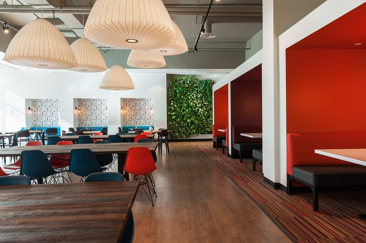 Living Wall Has A Powerful Impact in Commercial Space