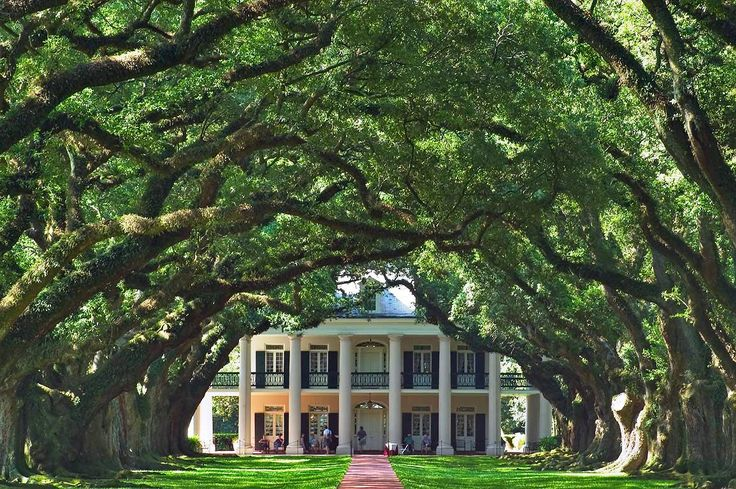 Oak Alley Plantation between New Orleans and Baton Rouge, Louisiana