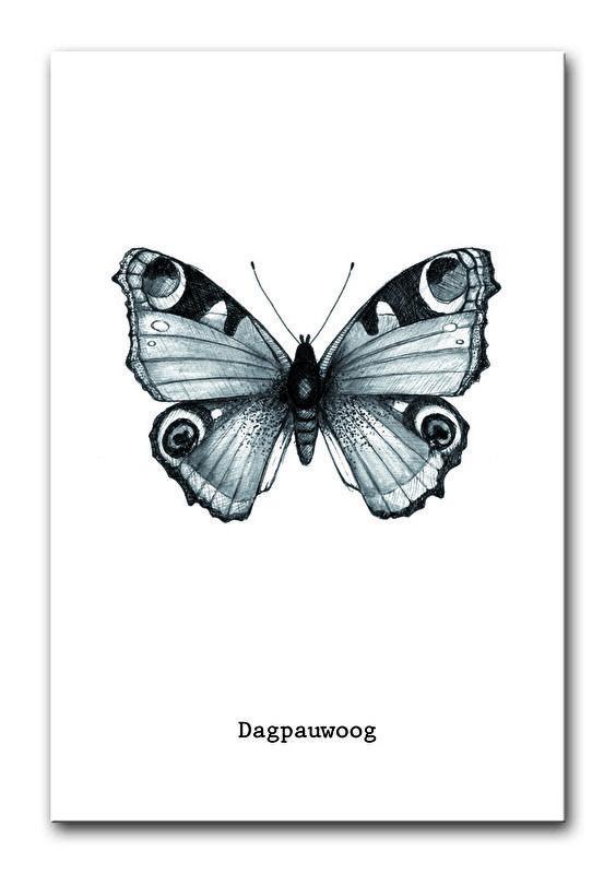 Poster Vlinder A4. Een handgetekend ontwerp van een dagpauwoog vlinder, gedrukt op sulfaat karton. Ontwerp is ook verkrijgbaar als ansichtkaart.