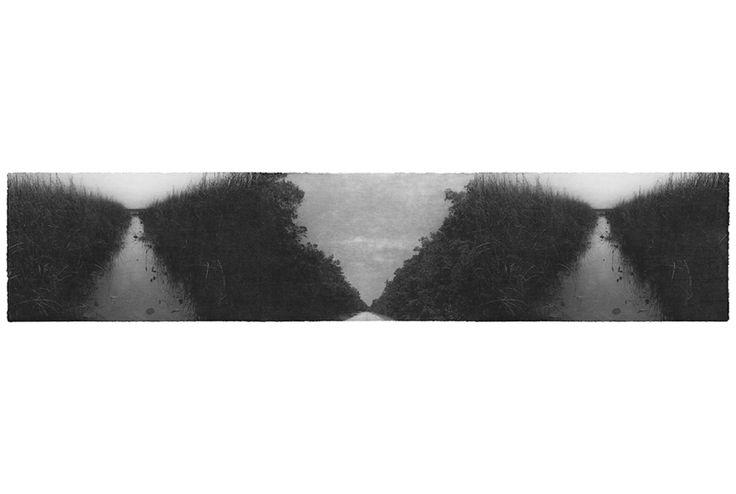 Everglades - Jungjin Lee, 2011.