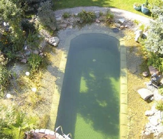 pond pools