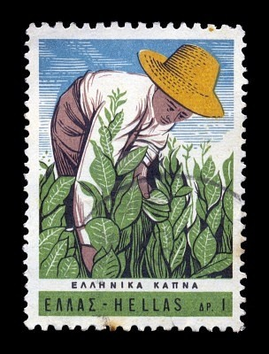 GREECE - CIRCA 1966. Vintage postage stamp with farmer harvesting tobacco plants illustration, circa 1966.