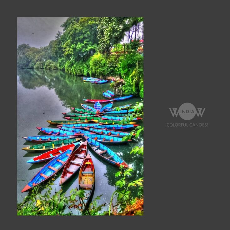 """""""Celebrating colours amidst the nature""""-Kerala, India Showacsing the beauty of our nation-WOW INDIA  #wowindia #manishcreations"""