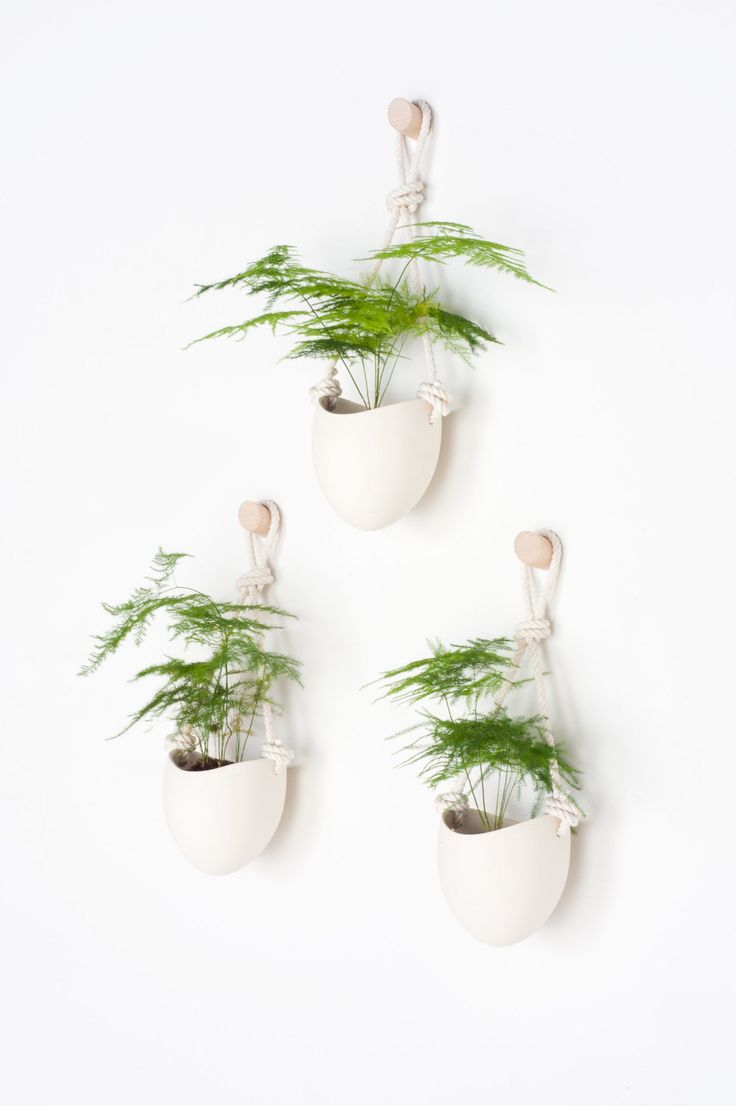 Nice Set Of 3 Ceramic + Cotton Rope Planters