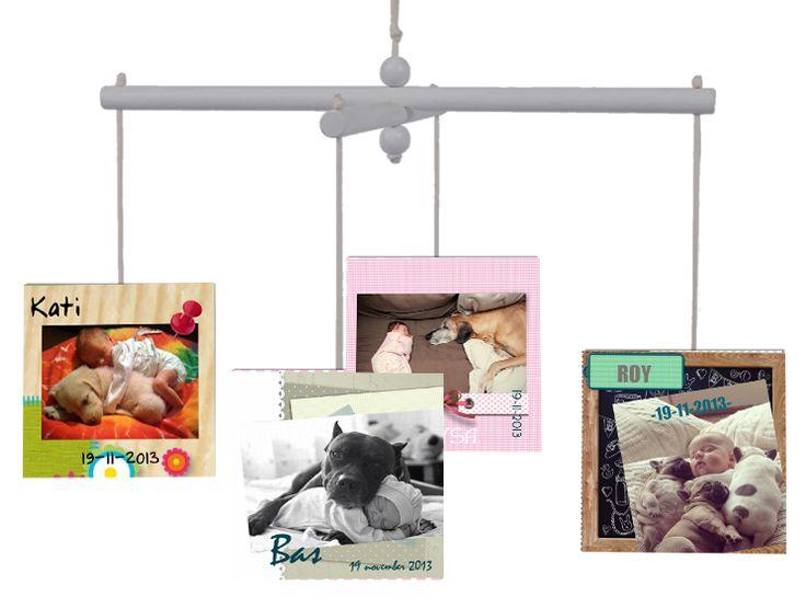 Geboortekaartjes met foto van baby en hond. Voor tips over hoe jij je hond kunt voorbereiden op de komst van de kleine, ga je naar bovenstaande link.