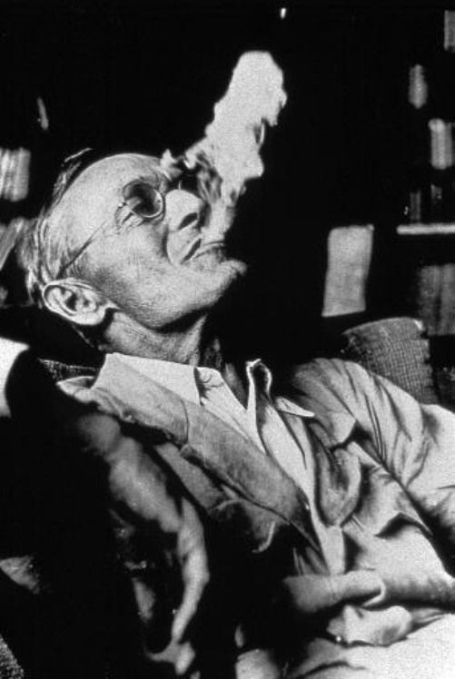 Hermann Hesse - Swiss poet, novelist, and painter. His best-known works include Steppenwolf, Siddhartha